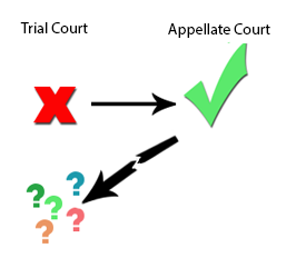 How generalizable are the opinions of the appellate courts?